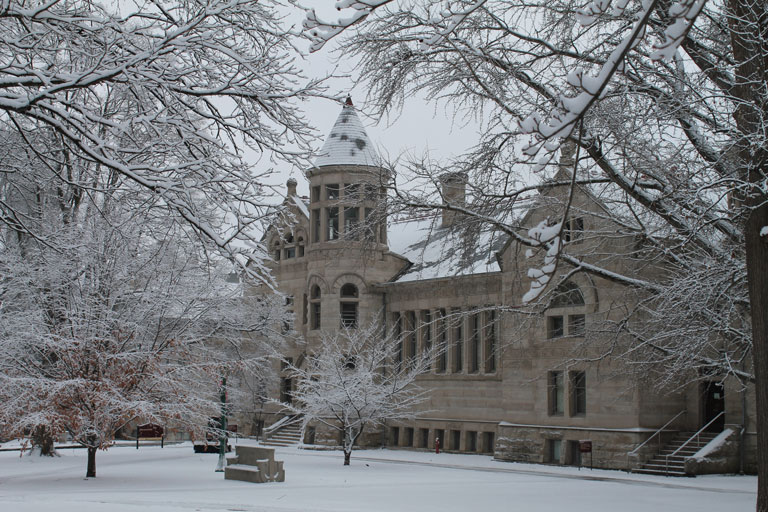 IU in winter