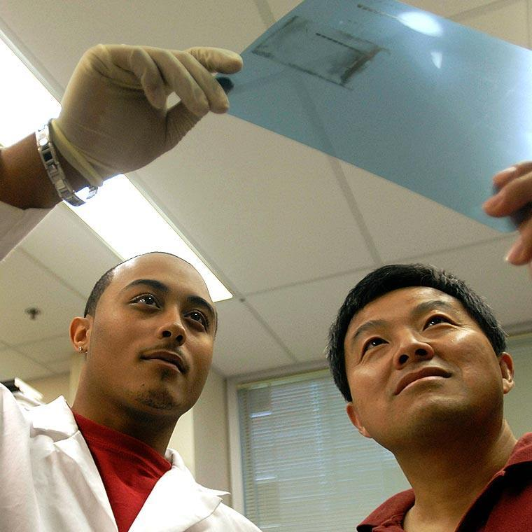 Students examine an X-ray slide